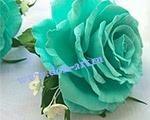 Резинки Аквамарин (пара) Р1